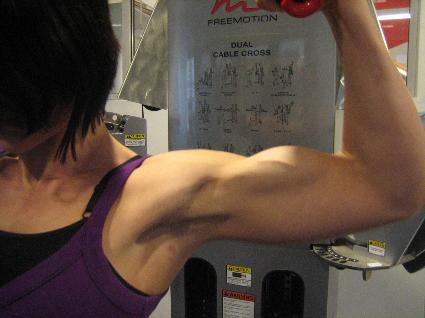 Frida Gimmet Muscles